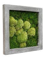 Machový obraz s rámom Polystone raw grey 50 x 50 cm
