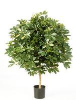 Umelá rastlina schefflera (giant ball schefflera var.) V110 cm