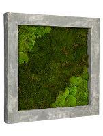 Machový obraz s rámom Polystone raw grey 70 x 70 cm